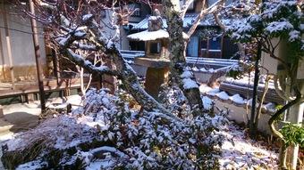 春は名のみの・・・都祁の風景、でも来月から忙しい