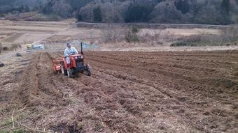 ジャガイモ畑植え付け用意完了